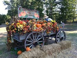 Corona Pumpkin Patch Hours by 17 Pumpkin Patches In Central Arkansas To Visit This Fall Little