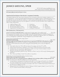 100 Walk Me Through Your Resume Summary A Fresh For Cook New Cook New