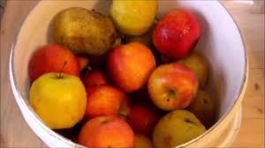 comment faire du jus de pomme maison