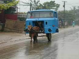 100 Cow Truck Horse Power Car 15 BriffMe Social Media Site Best