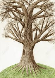 Artistic color pencil drawing The Tree Stock
