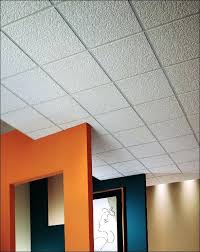 Styrofoam Ceiling Panels Home Depot smart bathroom ceiling tiles home depot peaceful ideas basement