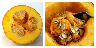 Roasting Pumpkin For Puree by Baking With Pumpkin Making Your Own Fresh Pumpkin Purée Is Easy