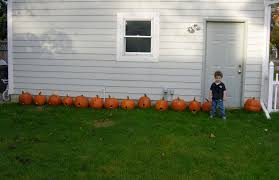 Ways To Make A Pumpkin Last Longer by The Great Pumpkin Preservation Study How To Preserve A Pumpkin