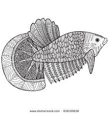 Coloring Page With Zentangle Fish Doodle Hand Drawn Vector Illustration Sea Animal For Adult