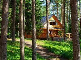 100 House In Forest In Forest Stock Editorial Photo S_Razvodovskij 7810569