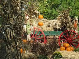 Best Pumpkin Patch Charlotte Nc by Pumpkin Patch And Fall Festival Fun In The Upstate Carolinakids