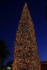Fashion Island Christmas Tree