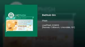 bathtub gin best served with best bathtub design 2017