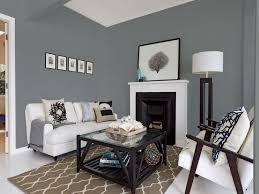 Fantastic Decor Grey Living Room Design KaramilaCom Gray Wall