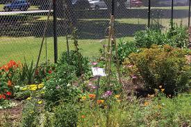 munity Programs munity Gardening