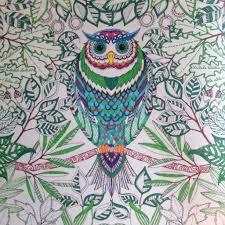 My Fancy Owl From Johanna Basfords Secret Garden