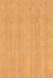 wohnwände aus massivholz bei casamia schöne