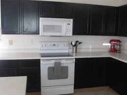 black painted cabinets with white appliances this convinces me