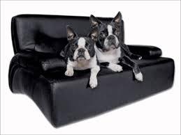 canap pour chien canapé pour chiens la toutounière