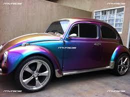 Amazing Bug Paint Absolutely Amazing The Bug