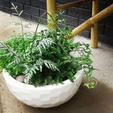100 Fresh Home And Garden Green Custom Planter With A Sweet Forge And