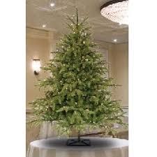Barcana Christmas Tree For Sale by Barcana Trees