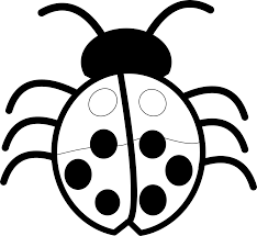 Black And White Bug Clipart