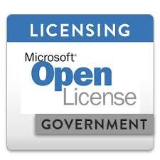 Microsoft fice 2013 Standard Open Government