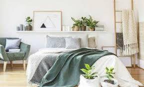 pflanzen im schlafzimmer die 5 besten lufterfrischer für die