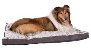 Tempur Pedic Dog Beds by Pet Beds Accessories Silentnight
