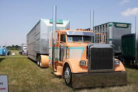 Cool Semi-Trucks   1996 Peterbilt 379 Best Of Show John O Keefe 2007 ...