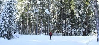 Winter Snowshoeing By Samantha Inouye
