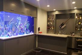 Aquascape : Custom Made Fish Tanks Home Aquarium Ideas The ... Cuisine Okeanos Aquascaping Custom Aquariums Fish Tanks Ponds Aquarium Design Group Aquarium Modern Awesome Home Photos Decorating Ideas Office Tank Dental Vastu Location Coffee Table For Sale Beautiful Fish Tank Designs Dawnwatsonme For Luxury Townhouse In Ldon Best Designs And Landscaping Including Fishy Business Cool Images Inspiration Tikspor
