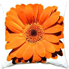 orange decorative pillows – tretinoincreamfo