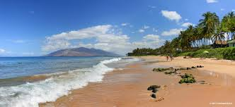 Kula Pumpkin Patch Maui by Succulents And More Maui Day 8 Keawakapu Beach U2014kula Botanical Garden