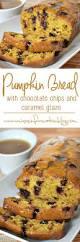 Bisquick Pumpkin Banana Bread by Easy Chocolate Chip Pumpkin Bread Recipe Miss Information