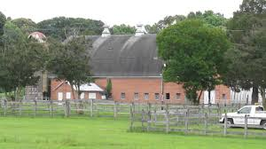 Newport News City Farm, Barn, Riverview Farm Park, 6/6/16 1303 ... Rural Farm House Barn Green Grass Stock Photo Image 63117406 Scobey Photographygreen Wedding Photography Meadows Petting Urbana Md Grand Prairie Tx Dallas Elegant Office 21544048 Shutterstock San Juan Island Historic Barns Of The Islands Sewn And Grown Denver Botanic Gardens Four Years Later Ashley Mckenzie Red Illustration Vector Art Getty Images Hampshire Architecture Portsmouth Milton Fratton Hilsea The Old Barn Oil Pating Landscapes Realism And Trees 31136492