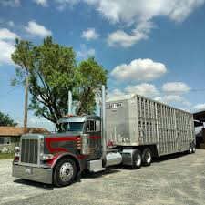 Pin By Ray Leavings On Cattle Trucks | Pinterest | Cattle And Cars Welcome To Ranch Trucks Trailers Cattle Requested Used Livestock Vehicles Vaex The Truck Traders Wilson Multi Axles Ats Mod For American Simulator Miniature Semi Truck And Cattle Pot Trailer Item Dc2435 Hoursofservice Driving Law Could Damage Industry 2004 Scania Cattle Livestock Truck Drag Belfast Trucks Truly Sustainable Solution Transporting Scania Group Toy Peterbilt Best Resource Putting The Big Ones On Bus Feed Yard Foodie Pin By Ray Leavings On Pinterest Rigs Cars
