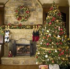 Making Christmas Tree Preservative by Buy Fresh Douglas Fir Christmas Tree Online Free Shipping Over