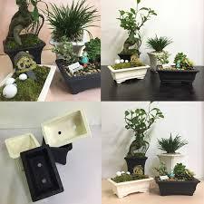 pot bonsai grande taille pot bonsai grande taille 8 noir et blanc et respirant blanc