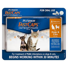 flea treatment for cats petarmor fastcaps nitenpyram for dogs cats 2 25 lbs target