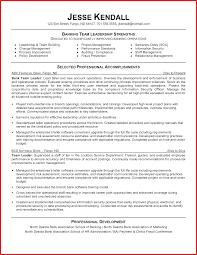software team leader resume pdf 100 leadership resume exles operations technology resume