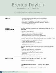 Resume Examples For Insurance Professionals Best Of Professional Business Resumes