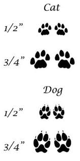 cat paw prints best 25 cat paw print ideas on pet tattoos