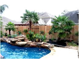 Backyards : Wonderful Tropical Front Yard Landscaping Ideas With ... Front Yard Landscaping With Palm Trees Faba Amys Office Photo Page Hgtv Design Ideas Backyard Designs Wood Above Concrete Wall And Outdoor Garden Exciting Tropical Pools Small Green Grasses Maintenance Backyards Cozy Plant Of The Week Florida Cstruction Landscape Palm Trees In Landscape Bing Images Horticulturejardinage Tree Types And Pictures From Of Houston Planting Sylvester Date Our Red Ostelinda Southern California History Species Guide Install
