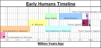 anatomically modern humans timeline 28 images sapiens sapiens