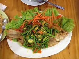 asma cuisine fried snapper with herbs picture of asma restaurant chiang