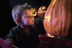 Pumpkin Patch Nashville Area by The Glow A Jack O U0027 Lantern Experience