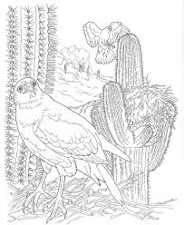 Cactus 15 Coloring Page