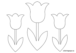 Coloring Pages Related Tulips Flower