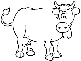 Cow Coloring Pages For Preschool Printable Sheet Anbu