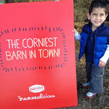 Pumpkin Patch Sf Yelp by Thomasson Family Farm 36 Photos U0026 12 Reviews Pumpkin Patches