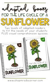 Life Cycle Of A Pumpkin Seed Worksheet by Best 20 Sunflower Life Cycle Ideas On Pinterest Plant Life