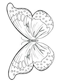 Butterfly Coloring Book Page